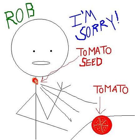 Rob Burden tomato seed
